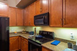 Two Bedroom Apartments for Rent in Houston, TX - Model Kitchen (3)